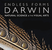 11. Darwin, Design and Christianity: With Professor John Brooke's image