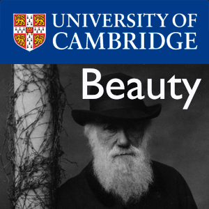 Beauty – Darwin College Lecture Series 2011's image