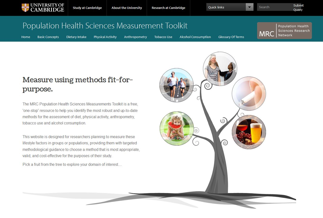 Population Health Sciences Measurement Toolkit's image