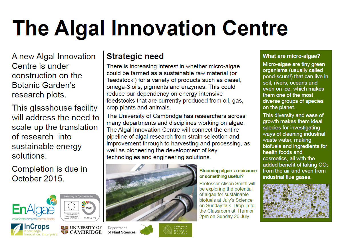 Algae Research at Cambridge's image