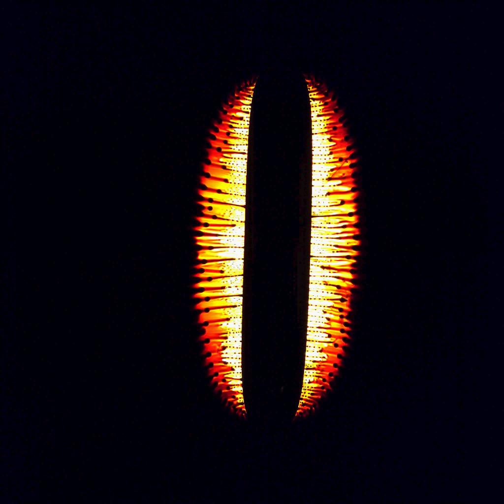 """A 50 mm long magnet placed at the bottom of a petri dish with 1 mm layer of ferrofluid. Following the gradient of magnetic field, the fluid forms a hump over the magnet. First, the film of flowing liquid becomes unstable forming """"jets"""". Then, jets become unstable breaking up into droplets. Field of view approximately 70x70 mm. Camera frame rate 250 fps, playback 30 fps."""
